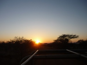 Sunrise from the open safari vehicle